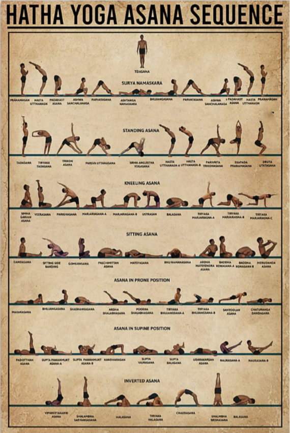 Hatha Yoga Sequence